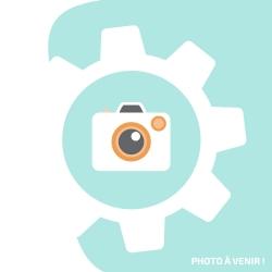 Ecran Soft OLED pour iPhone 12 Pro Max - Rapport Qualité/Prix